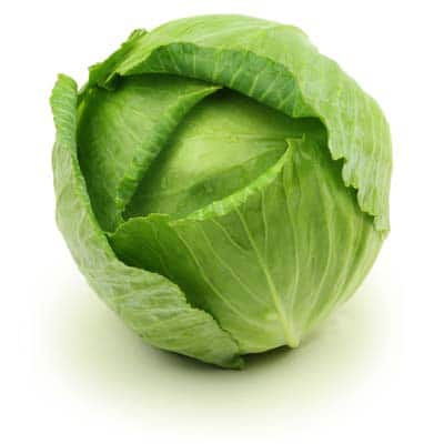 cabbage green