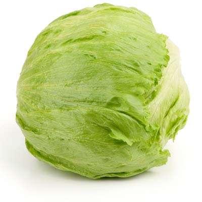 organic iceberg salad