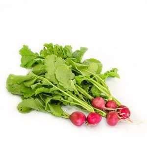 organic red radish