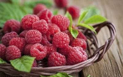 Bali's Berry Delicious Raspberries