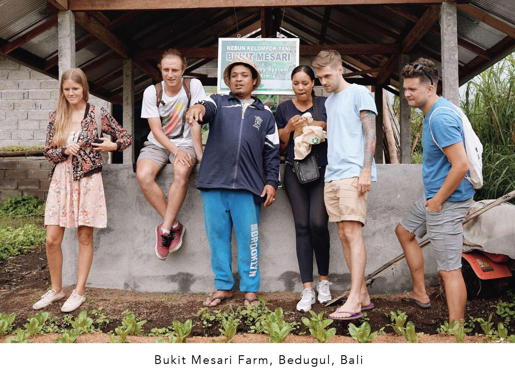Bali Direct Organic Farm Tour Bukit Mesari Local Produce