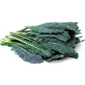 Organic Kale Toscano